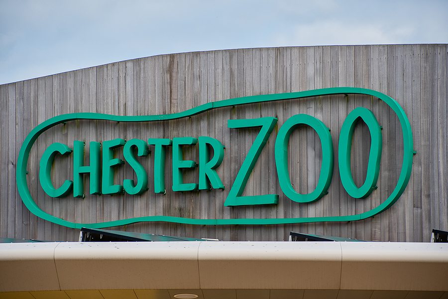 Chester Zoo Monsoon Forest Reopens After Fire